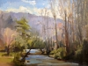 cheryl-keefer-the-davidson-early-spring